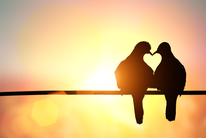 Romantik-Wochenende – Romantik-Hof